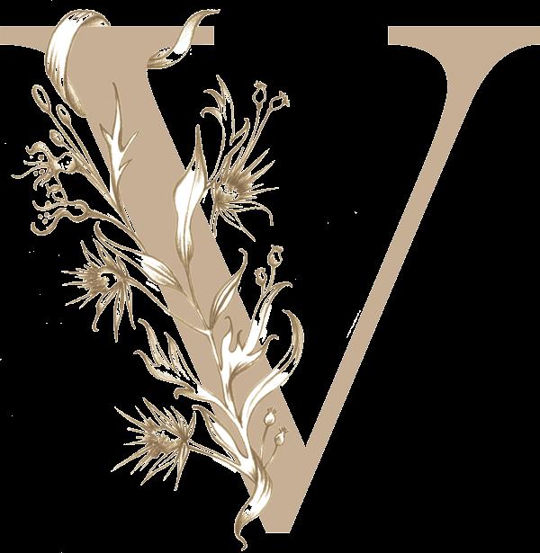 Valeryvillard-photographe